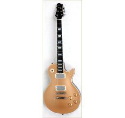 N Zaganin LP Goldtop Deluxe Guitar
